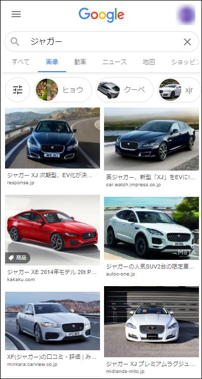 「ジャガー」の画像検索結果